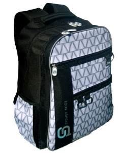Backpack_Raleigh_Silver Liningpng copy